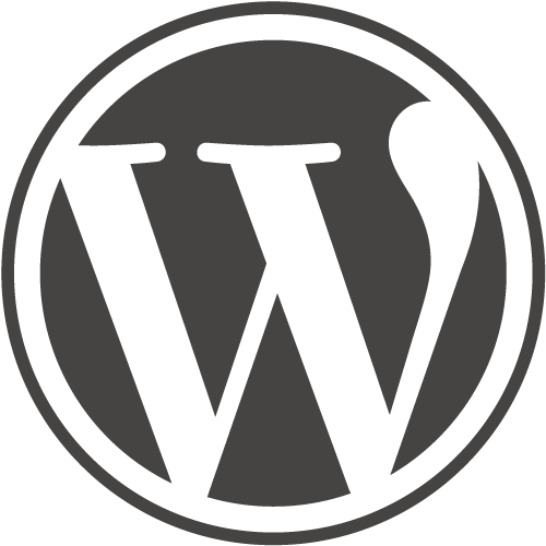 manual de SEO en WordPress para fotógrafos